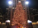 christmas-tree-rockefeller-center